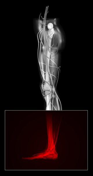 biomecanica y ortopodologia